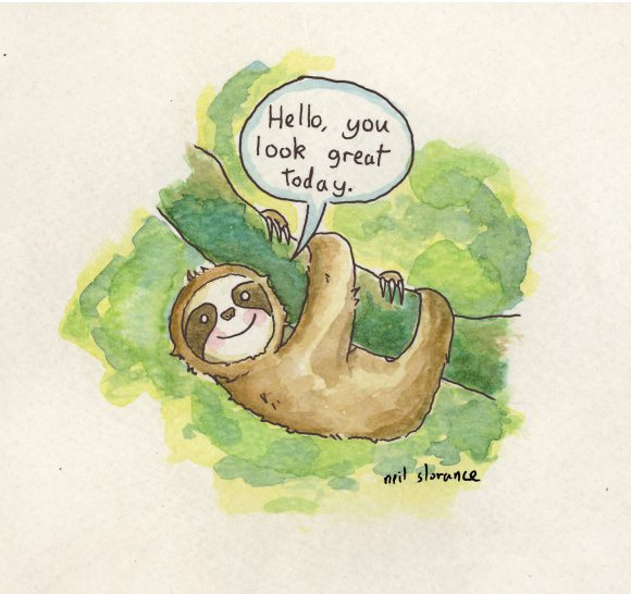 sloth by neil slorance