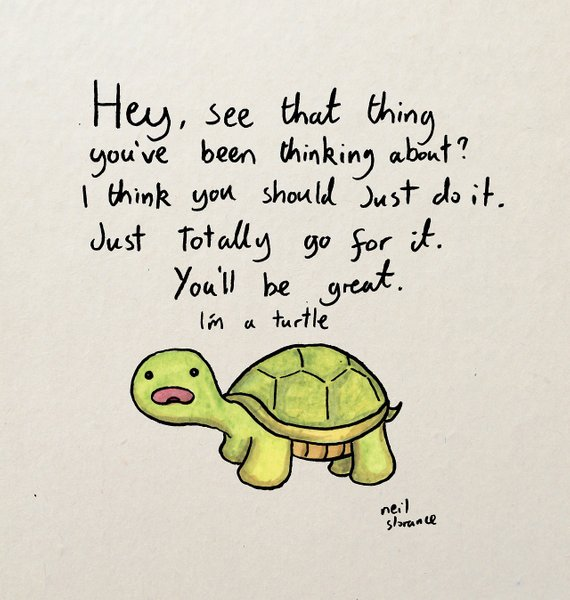 Optimistic Turtle by Neil Slorance