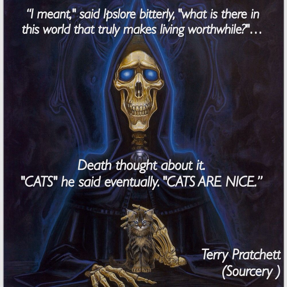 """Death with a kitten. """"Cats are nice."""""""